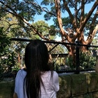 Marika, assistente all'infanzia Vicenza